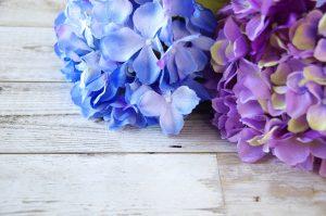 お祝い状やお礼文に使える6月の季語・時候の挨拶を知ろう