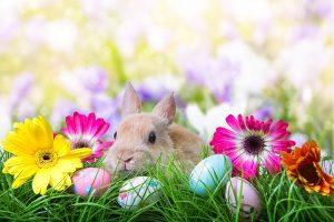 キリストの復活を祝う「イースター」