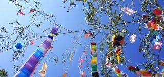 お祝い状やお礼文に使える7月の季語・時候の挨拶を知ろう